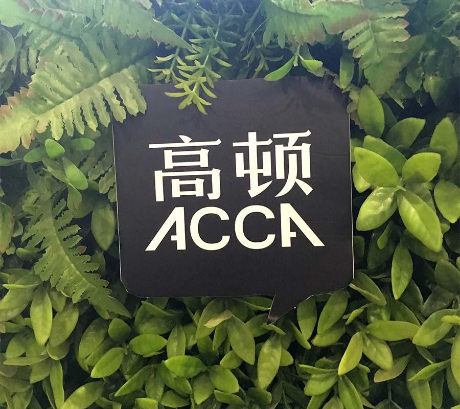 <b>ACCA为什么高薪?其中到底有什么秘密?</b>